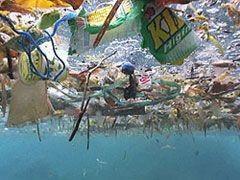 Odpadky v oceánu https://cz.pinterest.com/pin/468444798718370126/